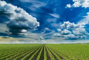 12 -14 okt 2016-Risk Identification and Screening Technologies of Agro-food