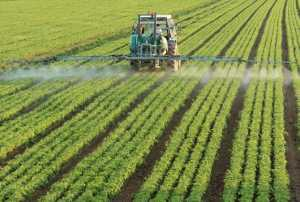 14 to 16 September 2020 – International Conference on Pesticides: Control for sustainable use and food safety